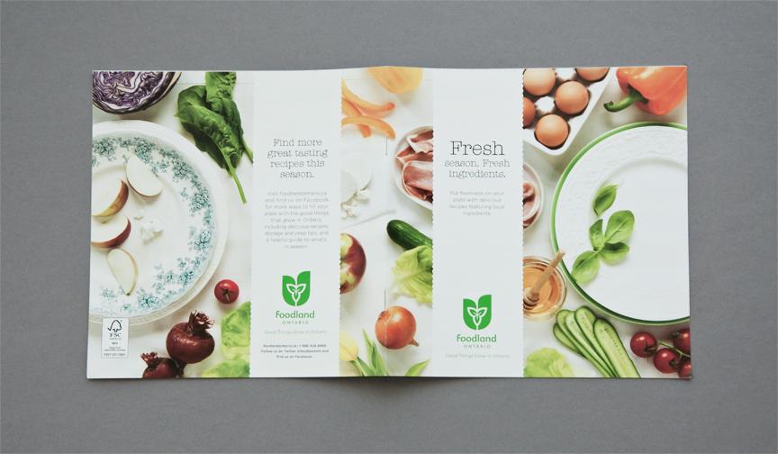 motivationally effective brochure