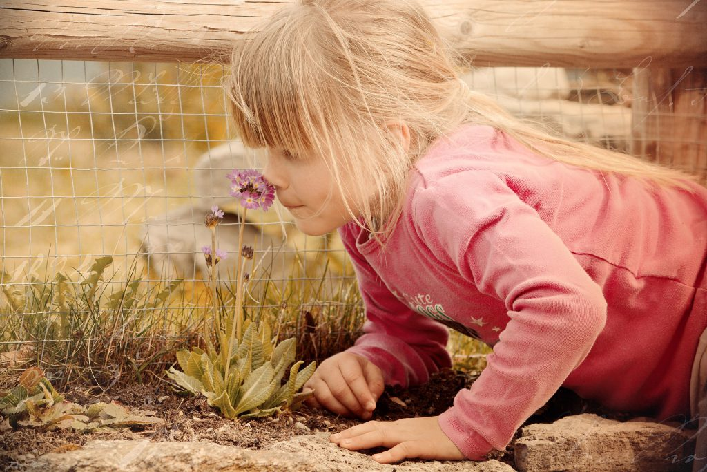 Girl smelling flower on the ground.