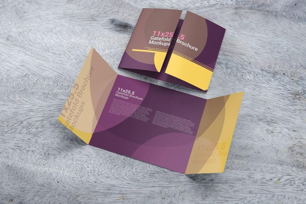 Gatefold Brochure by Ventrogravic Design