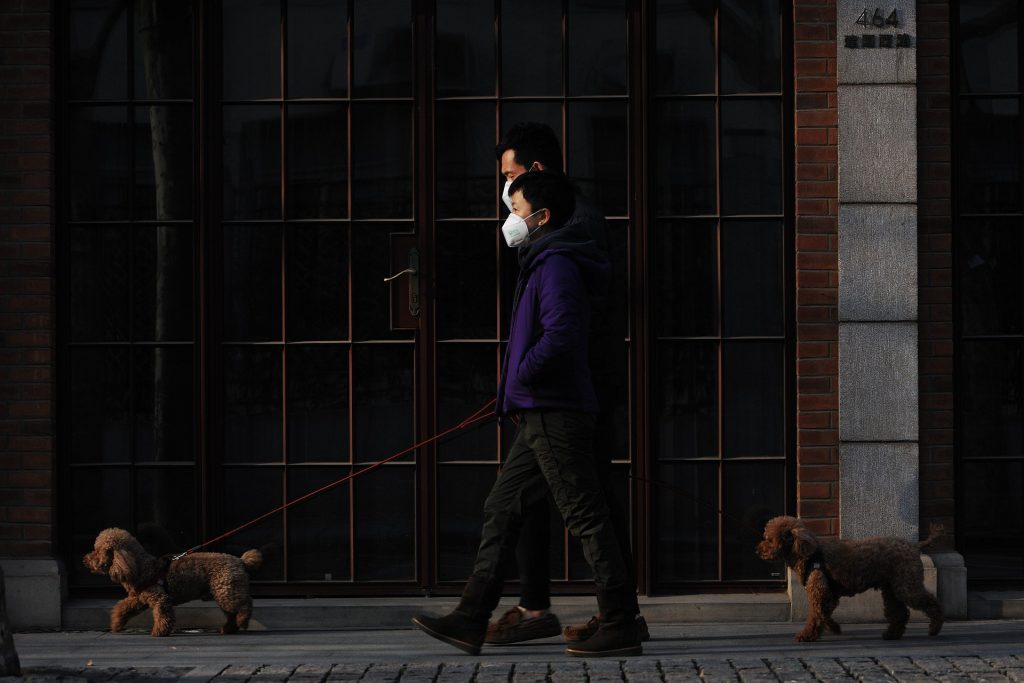 Masked Dog-Walking Image